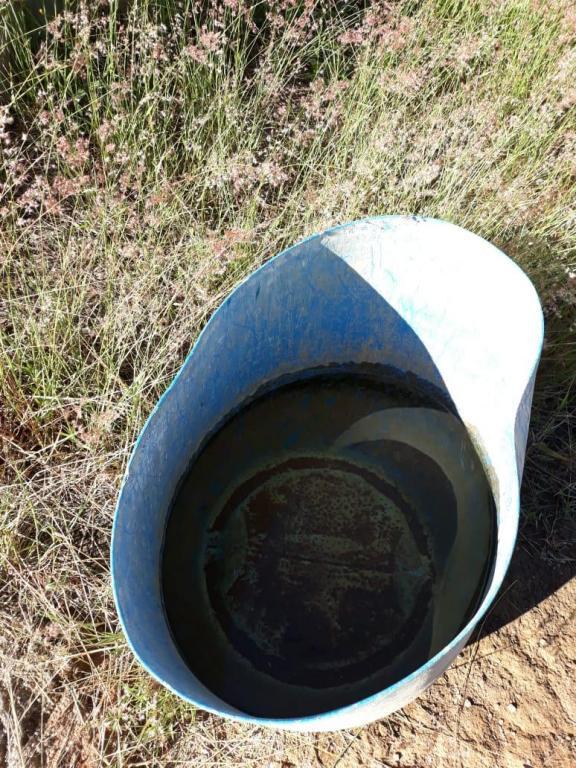 foto de Serra Negra - Vigilância Ambiental realiza avaliação densidade larvária