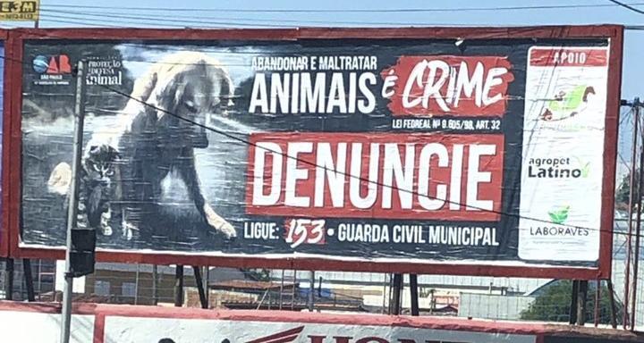 foto de OAB de Amparo realiza campanha contra abandono e maus tratos a animais