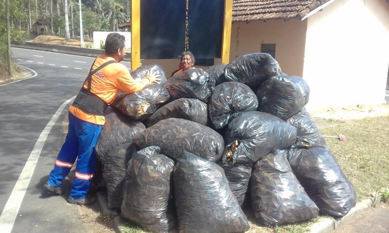 foto de Serra Negra: Ramalhada recebe limpeza