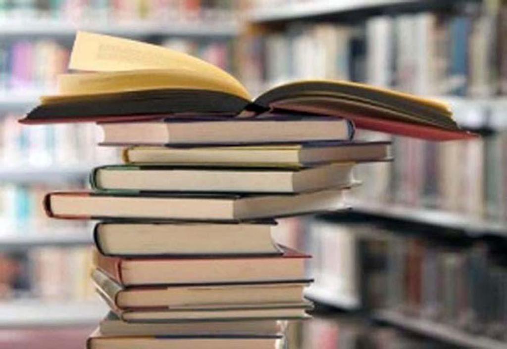 foto de Biblioteca de Pedreira disponibiliza novos títulos