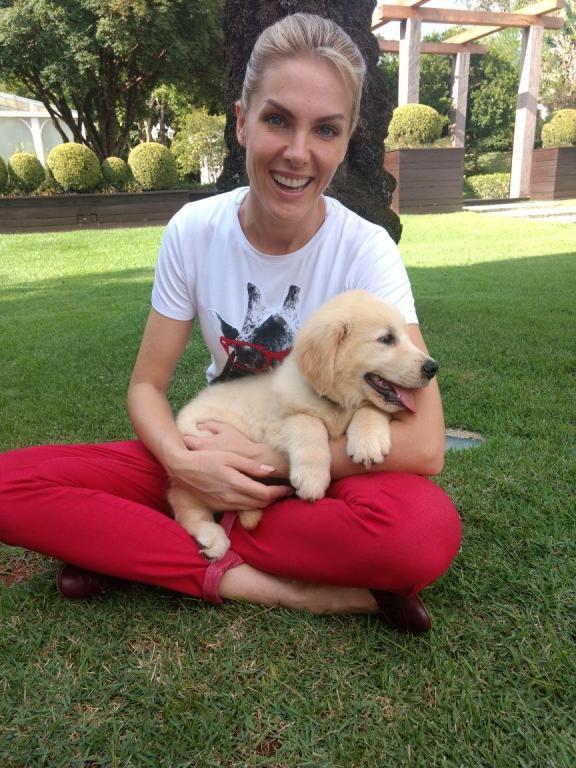 foto de Cão socializado por Ana Hickmann, Kira, recebe treinamento para tornar-se cão de assistência à cadeirante