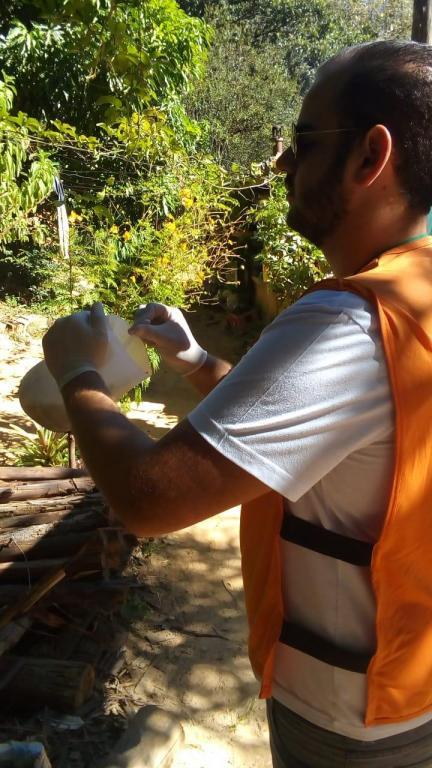 foto de Amparo tem 11 casos positivos de dengue em 2020