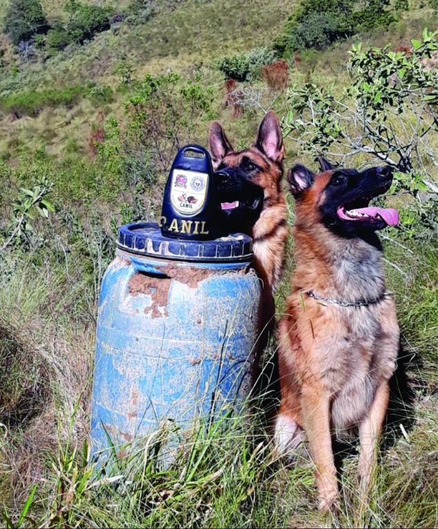 foto de Canil da GCM localiza mais de três quilos de drogas enterradas no Jardim Brasil