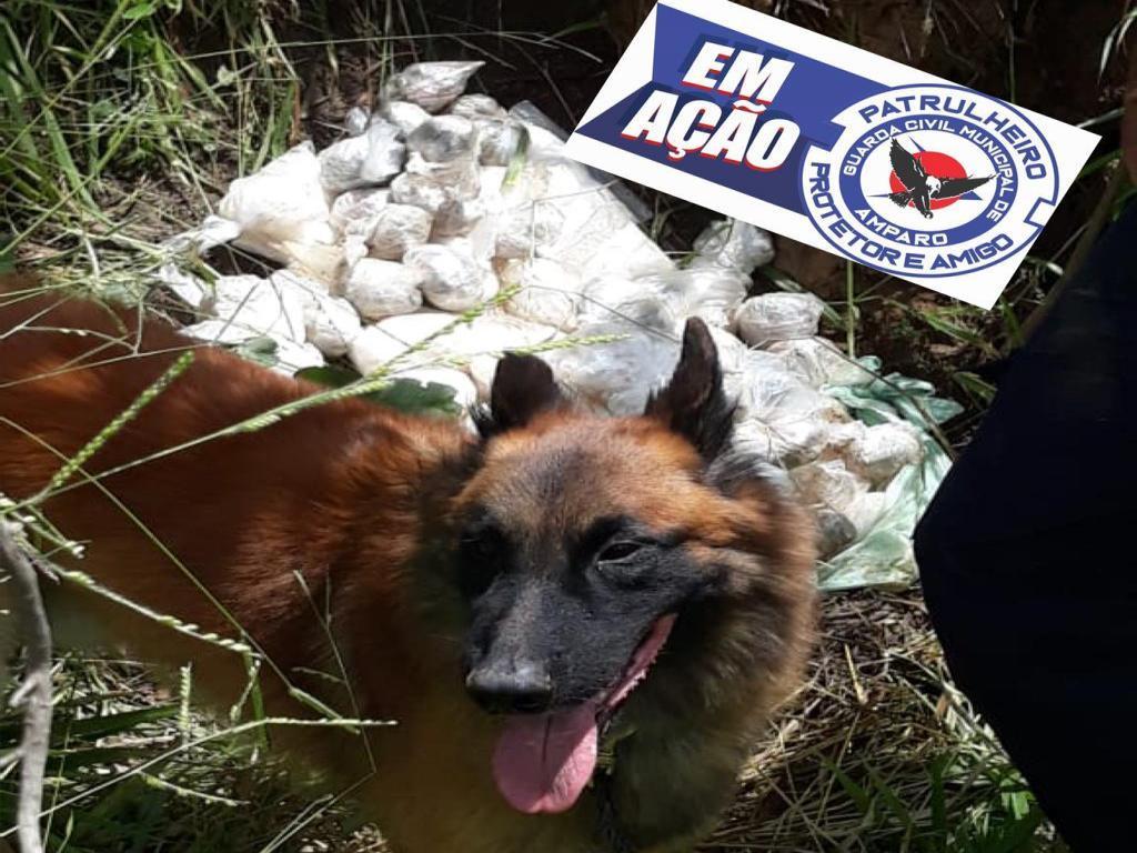 foto de GCM de Amparo recolhe mais de R$ 46 mil em drogas no Jardim Brasil