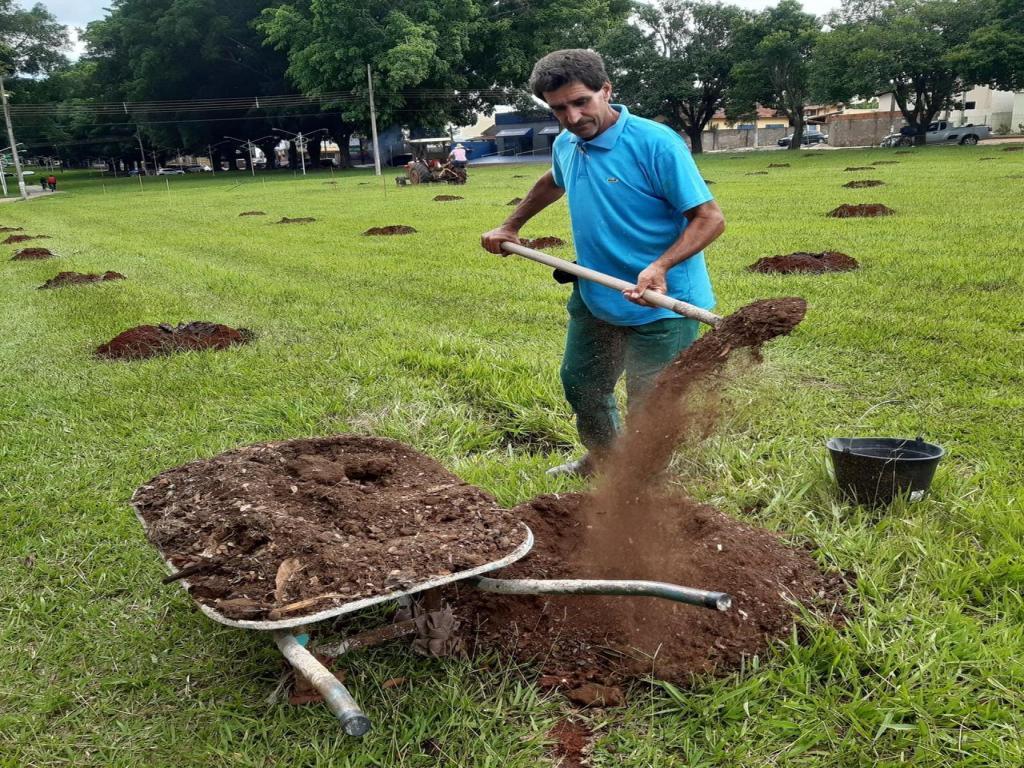 foto de Prefeitura inicia plantio de mudas para memorial da Covid-19 em Artur Nogueira