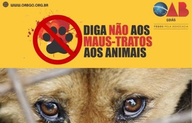 2021022324351554maus_tratos_animais.jpg