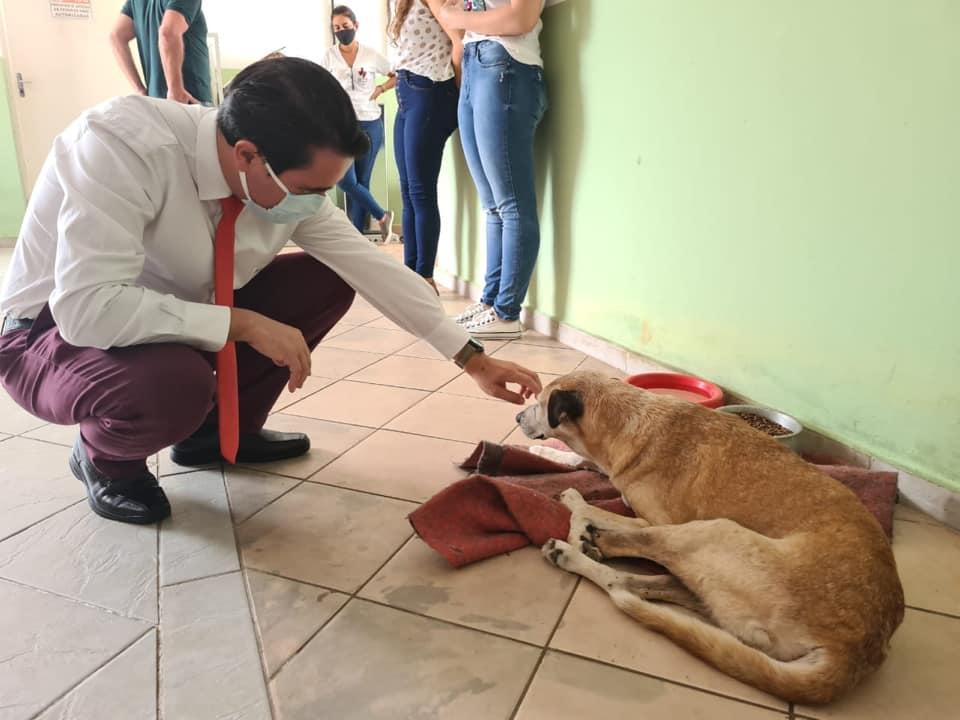 foto de Carlos Alberto disse que pretende aumentar de 170 para 400 as castrações de animais no NCZ