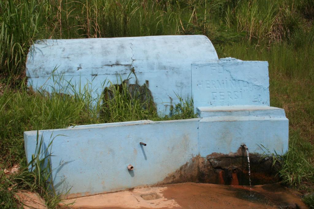 foto de SAAE alerta sobre presença de coliformes totais e fecais na água da fonte do Flamboyant