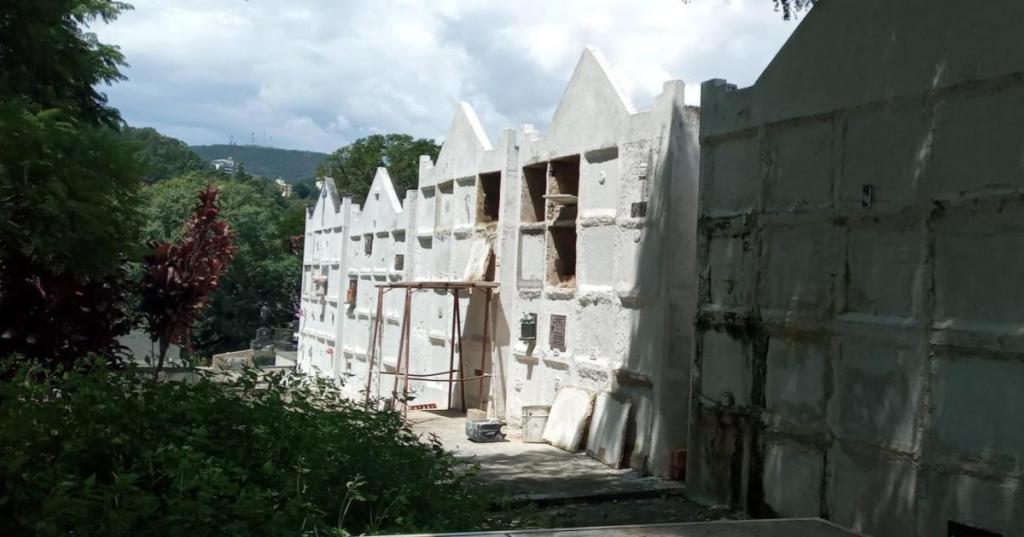 foto de Serra Negra vai ampliar número de colmeias no cemitério