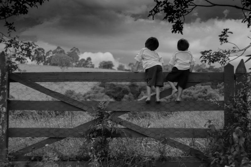 foto de Cine Foto Clube de Amparo conquista segundo lugar no 9º Salão Nacional de Arte Fotográfica