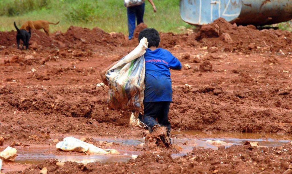 foto de Acidentes de trabalho já atingiram cerca de 30 mil crianças e adolescentes no Brasil