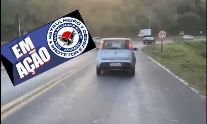 foto de Homem abandona animal em rodovia e é filmado por motoqueiro