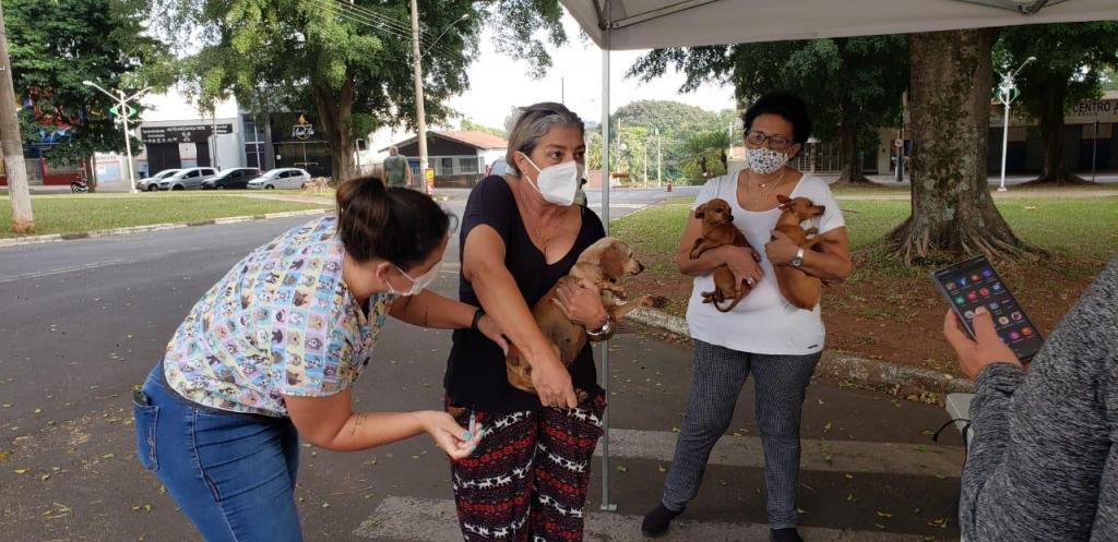 foto de Secretaria de Saúde vacina 150 cães e gatos contra raiva em Artur Nogueira