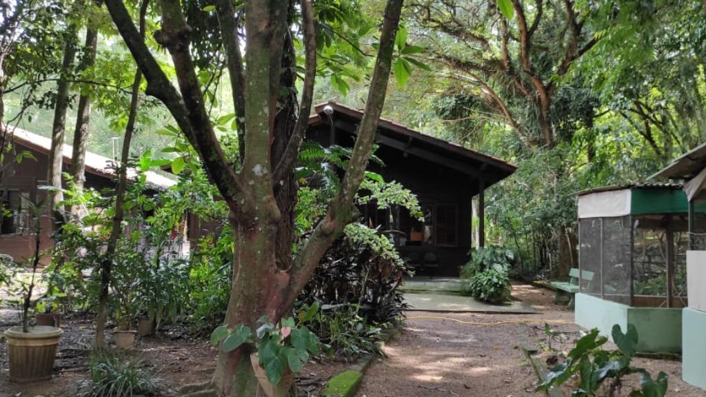 foto de Amparo reabre Parque Ecológico ao público nesta quinta