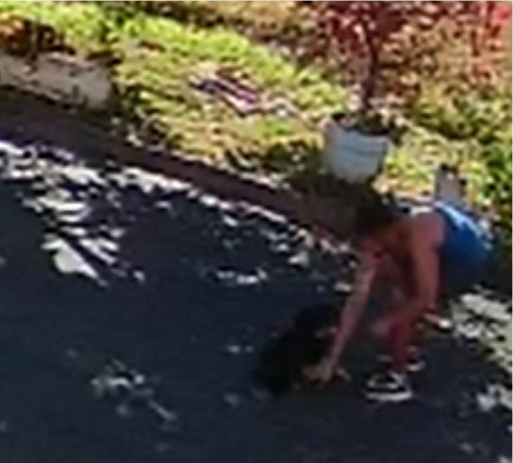 foto de Homem que aparece em vídeo chutando cachorro se apresenta à polícia