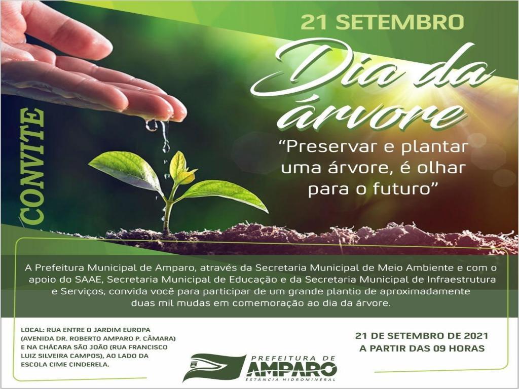 foto de Amparo plantará duas mil mudas em comemoração do Dia da Árvore
