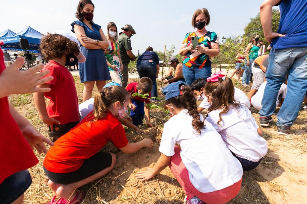 foto de Prefeitura anuncia plantio de 2 mil árvores