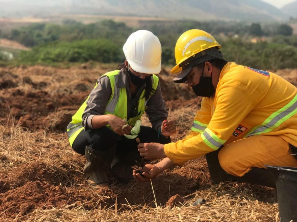 foto de Barragens Pedreira e Duas Pontes têm ação socioambiental e criam o Bosque dos Funcionários